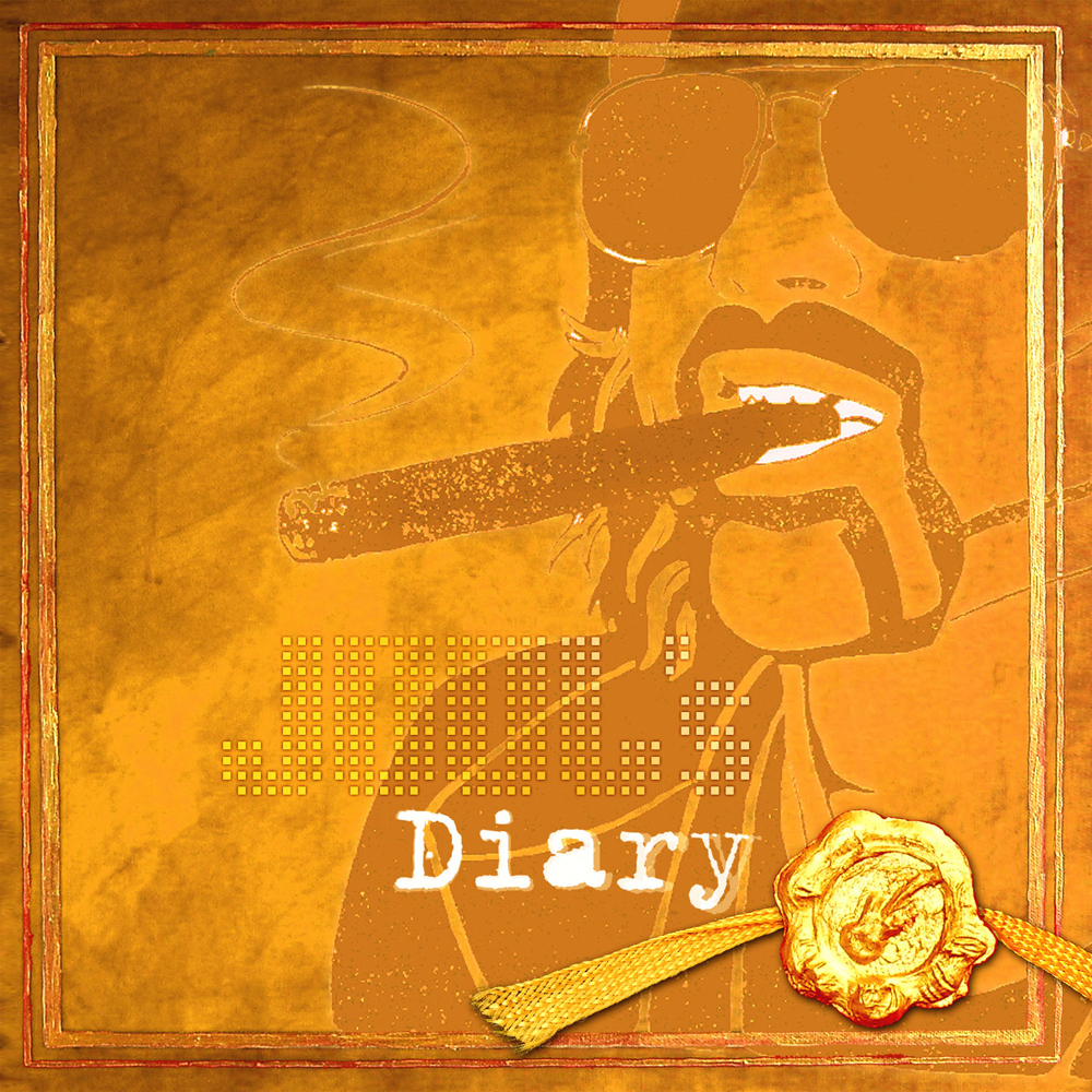 NEU-VÖ: JOOL´S DIARY 2010 – www.joolmusic.com
